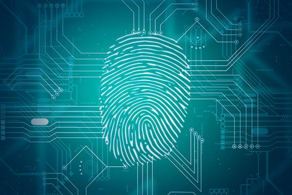 Cyber CSI Webinar
