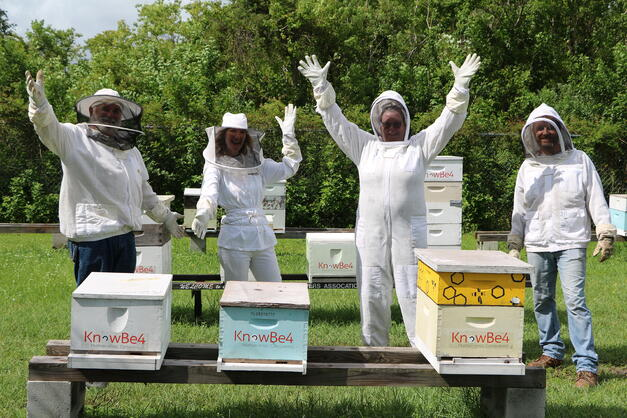 11 beehives for 11 years!