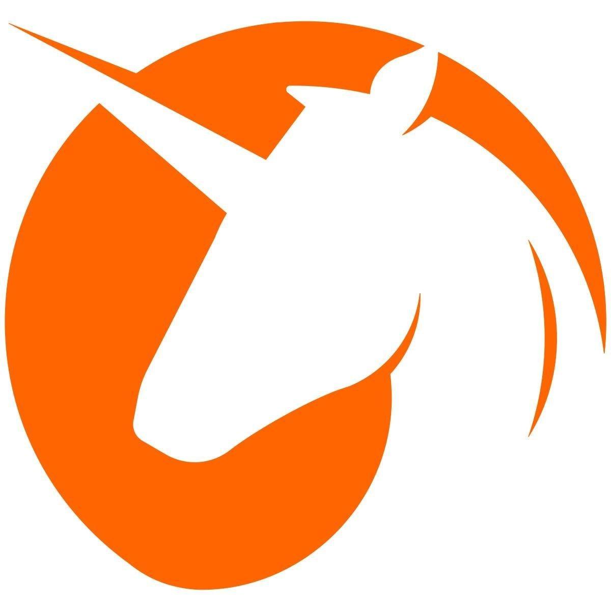 Unicorn Graphic